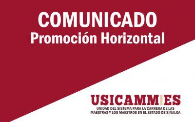 PROMOCIÓN HORIZONTAL_INSTRUCCIONES PARA REALIZAR LA CARGA DE DOCUMENTOS